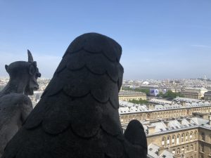 Gargoyles of Notre-Dame.